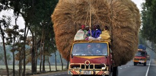 truck transporting wheat bales